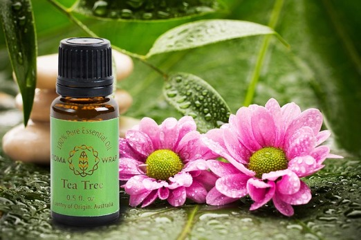 tea-tree-essential-oil-aromatherapy-med.jpg